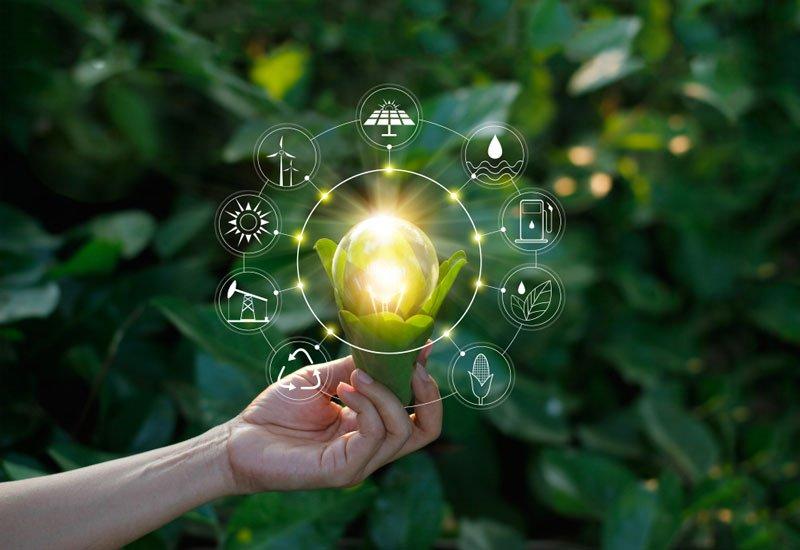 Sustentabilidad en la cadena de suministro, un elemento de resiliencia