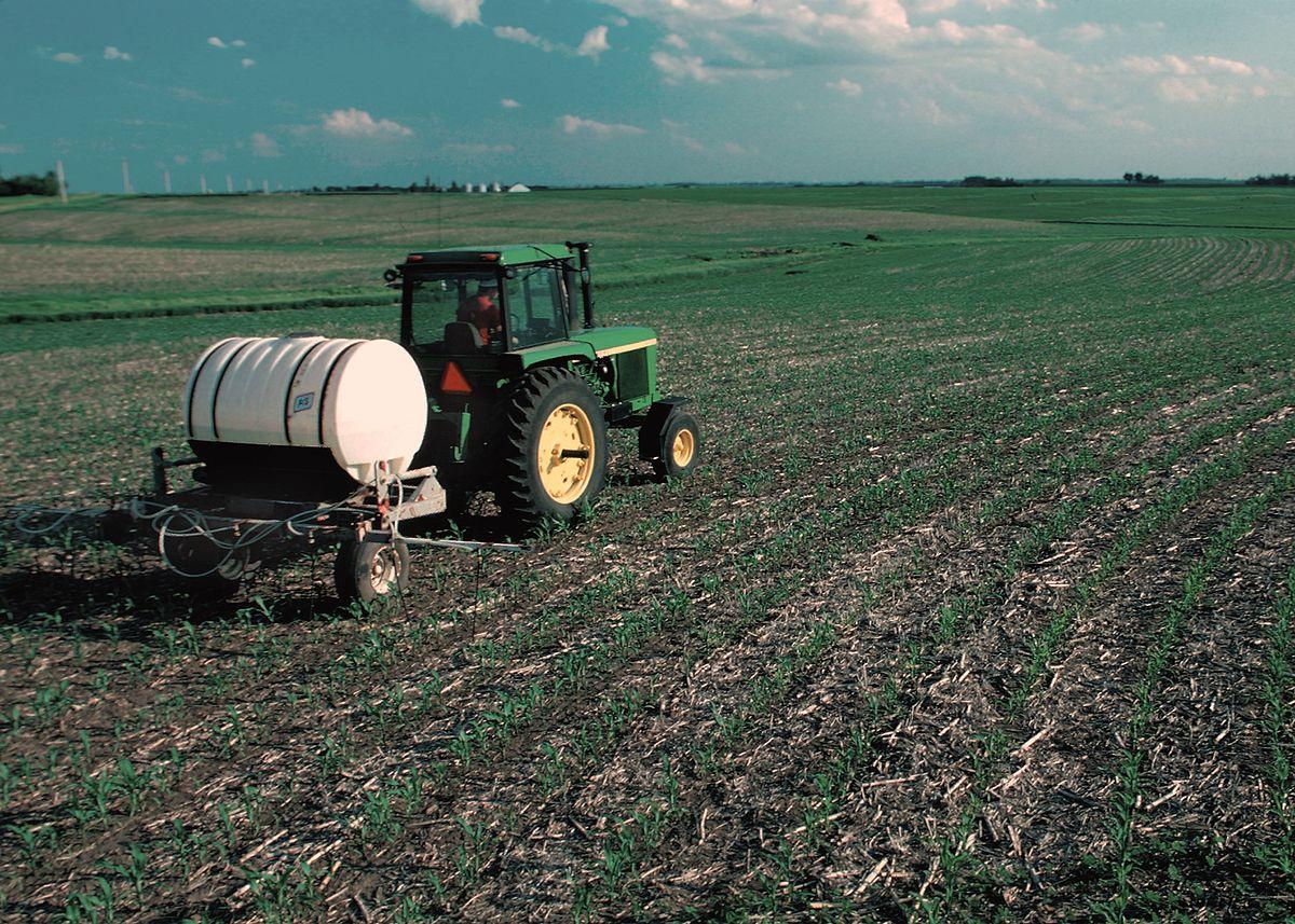 Más del 60% de productores de maíz beneficiados en Morelos