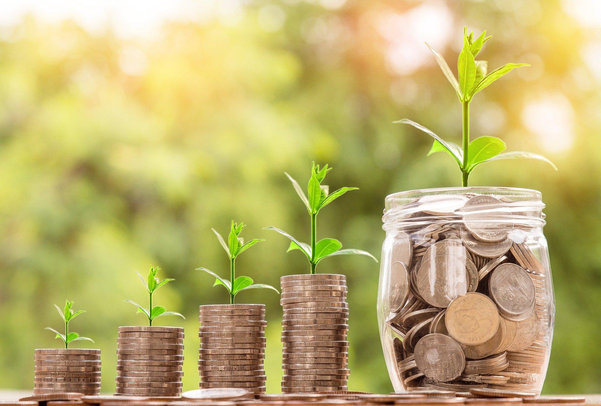 Neurofinanzas y como aplicarlas en beneficio de tu cartera