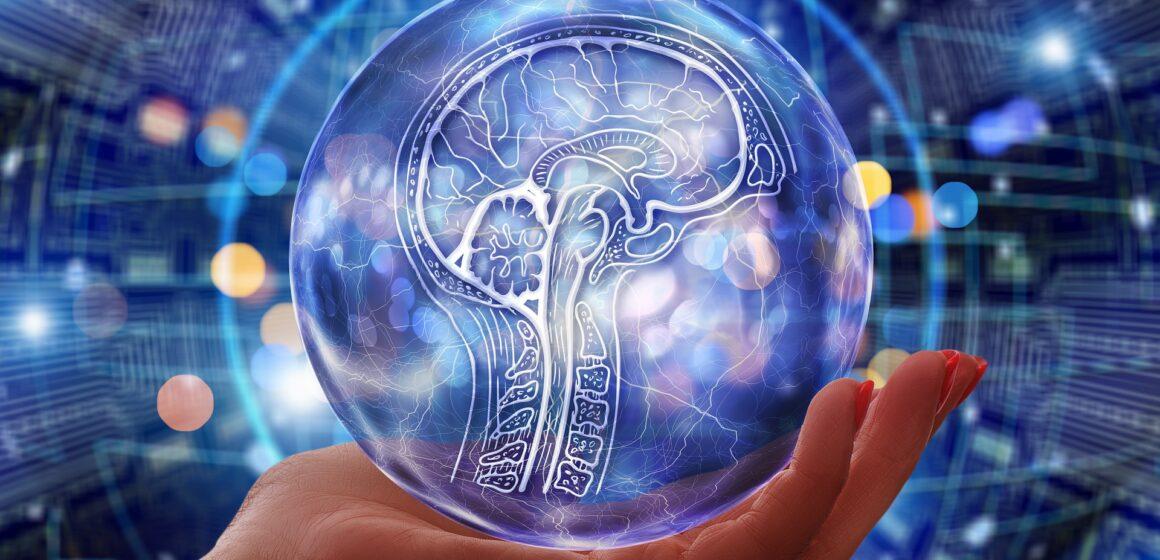 Inversión en IA y en personal debe ser similar: MIT Sloan