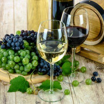 Así es la industria vitivinícola en México
