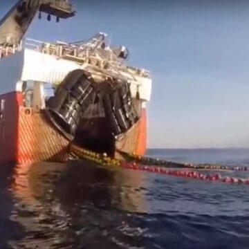 Camarón de ribera se seguirá exportando a EU