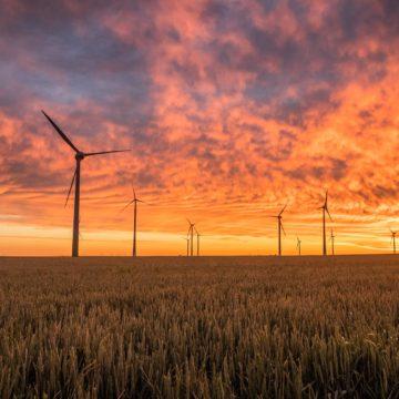Rumbo a las energías renovables: MIT Sloan