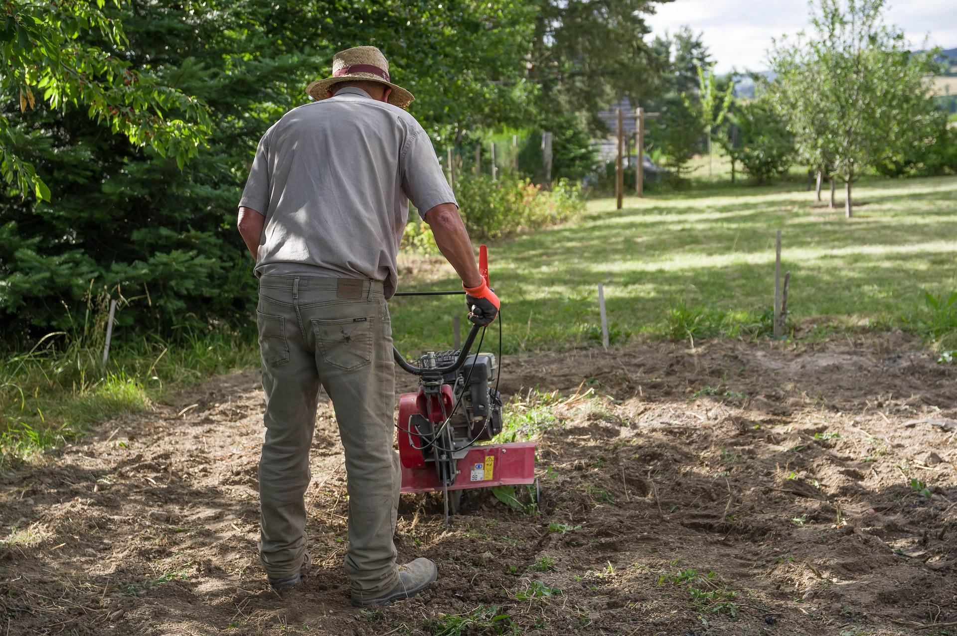 2.2 millones de mexicanos realizan trabajo doméstico remunerado