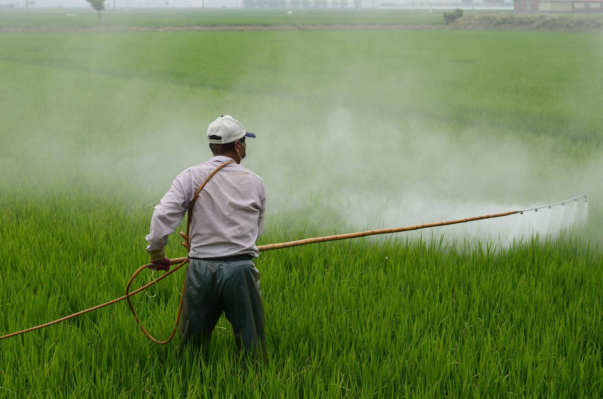 44 mil productores reciben apoyo con proyectos de desarrollo territorial