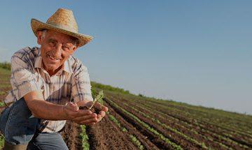 Tema laboral del sector agroalimentario ante el T-MEC